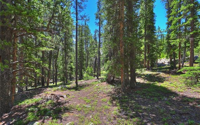Lot 1111 Tombstone Road - photo 5