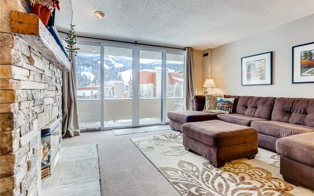 Snowbridge Square Condo f204 - photo 2