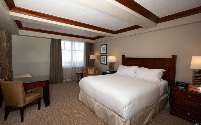 Ritz Residential Suites hs641 - photo 5