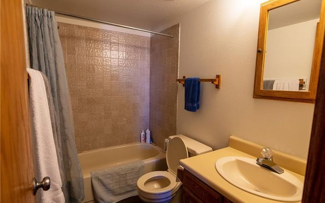 Buffalo Ridge/Village Condo 304 - photo 14
