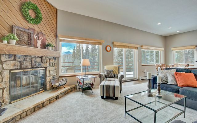 98000 Ryan Gulch Road #101 SILVERTHORNE, CO 80498