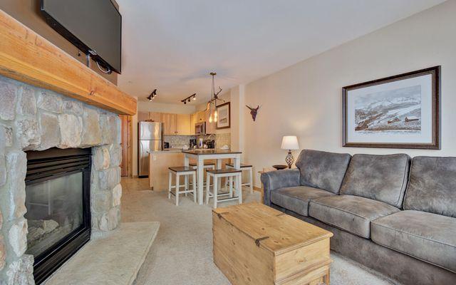 Buffalo Lodge And The Dakota Condos 8386 - photo 1