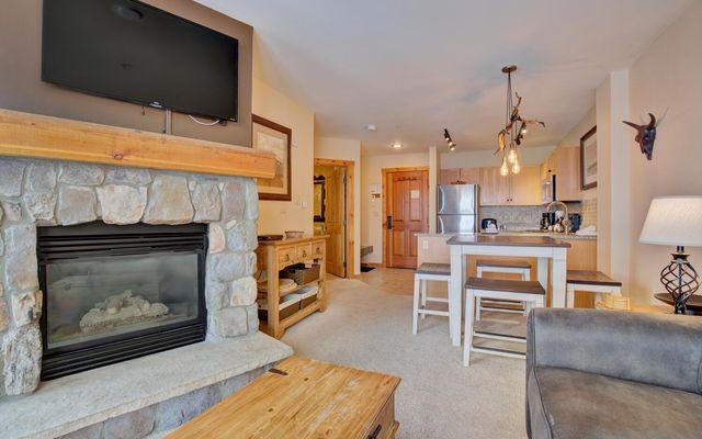 Buffalo Lodge And The Dakota Condos 8386 - photo 2