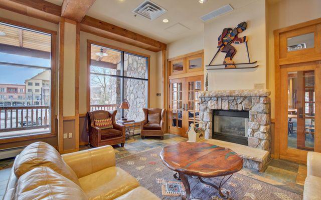 Buffalo Lodge And The Dakota Condos 8386 - photo 25