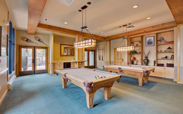 Buffalo Lodge And The Dakota Condos 8386 - photo 26