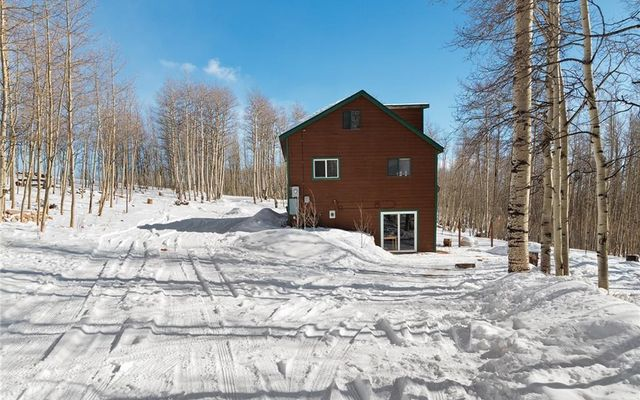 1028 Little Baldy Drive - photo 3