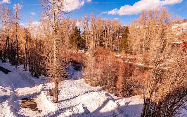 Blue River Flats 3-201 - photo 32