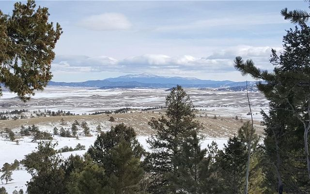 Lot 5878 Running Bear Road HARTSEL, CO 80449