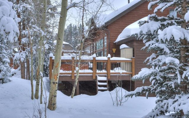 Village Point Townhomes At Breck 120 - photo 30