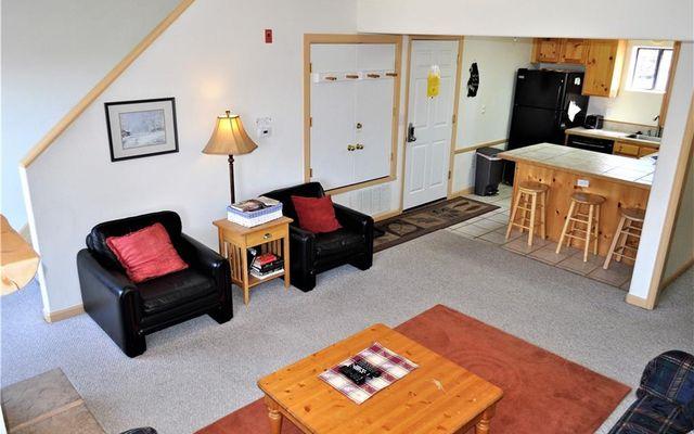 Timber Lodge At Lake Dillon 205 - photo 3