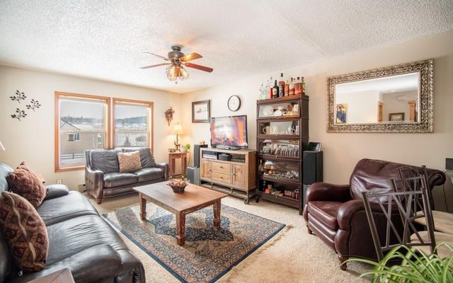 46 Avalanche Cir Circle DILLON, CO 80435