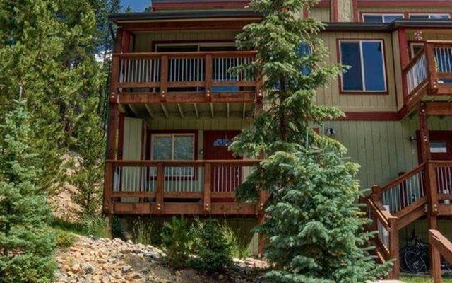 132 Illinois Gulch Road #1 BRECKENRIDGE, CO 80424