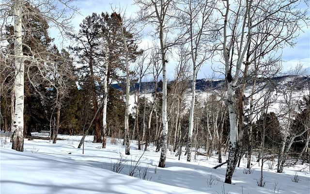 TBD Middle Fork Vista LOT 530 FAIRPLAY, CO 80440