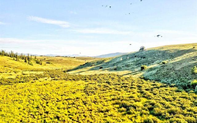 791 Apache Trail - photo 9