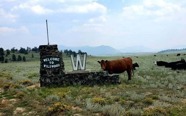 1529 Yellowstone Road HARTSEL, CO 80449