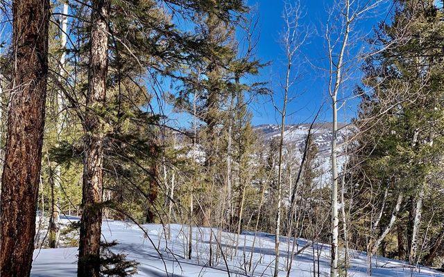 2885 Middle Fork Vista - photo 11