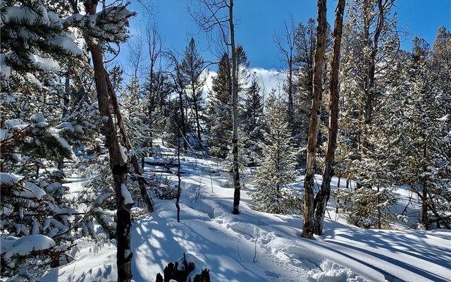 2885 Middle Fork Vista - photo 12