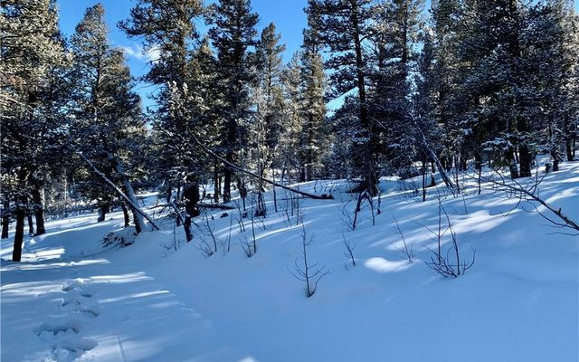 2885 Middle Fork Vista - photo 15