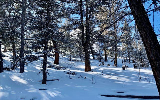 2885 Middle Fork Vista - photo 19