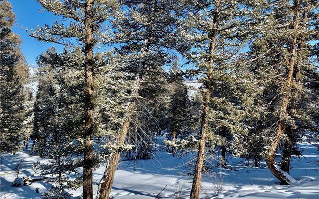 2885 Middle Fork Vista - photo 22