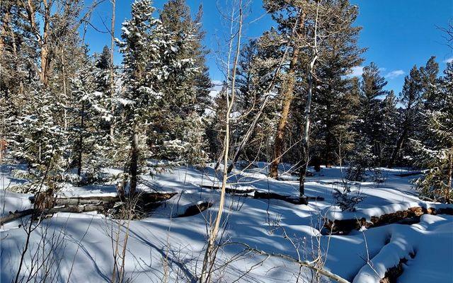 2885 Middle Fork Vista - photo 23