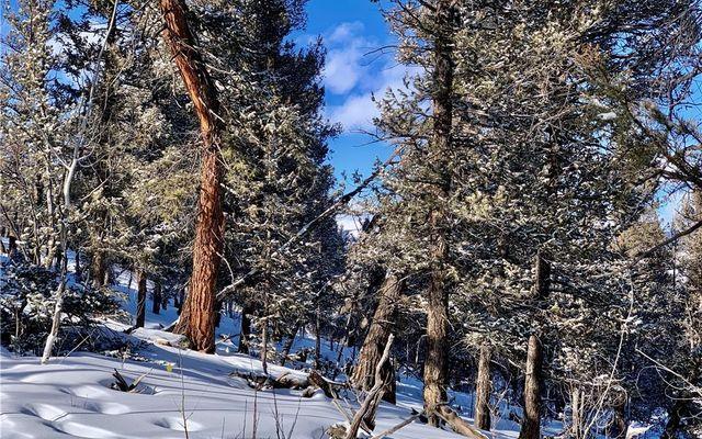 2885 Middle Fork Vista - photo 25