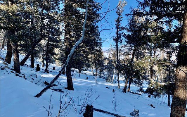 2885 Middle Fork Vista - photo 5