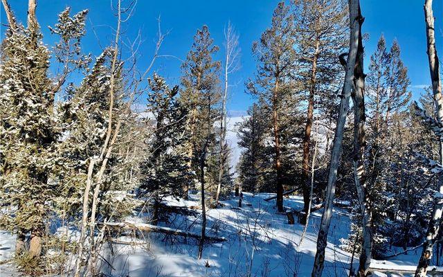 2885 Middle Fork Vista - photo 7