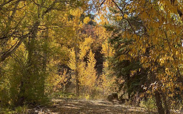 6902 Brush Creek Road - photo 2