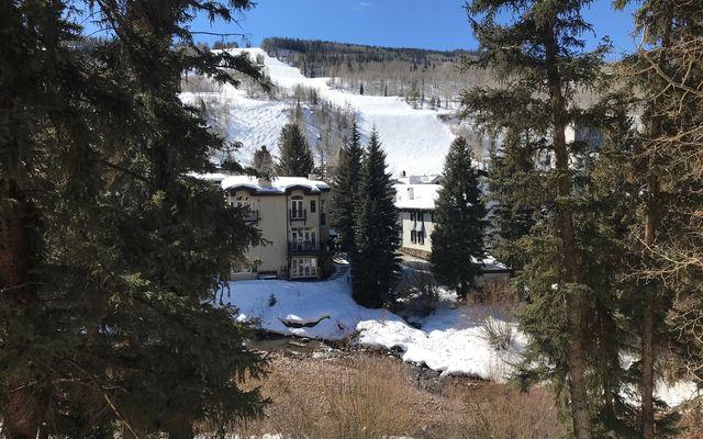 Mountain Haus 332 & 334 - photo 18