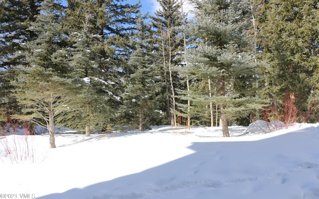 Northwoods Condo A-1 - photo 26