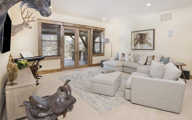 161 Grey Hawk - photo 20