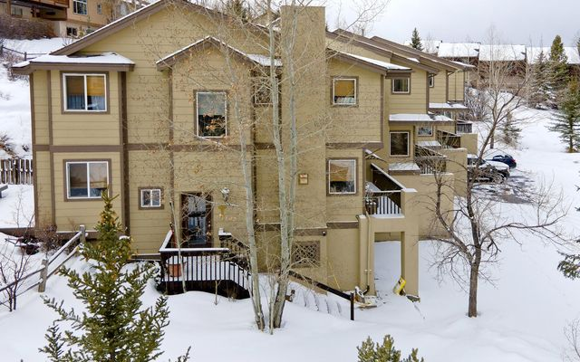 Elk Run Townhome B - photo 29