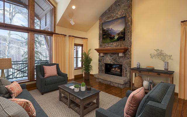 The Villas At Beaver Creek R-2 - photo 3