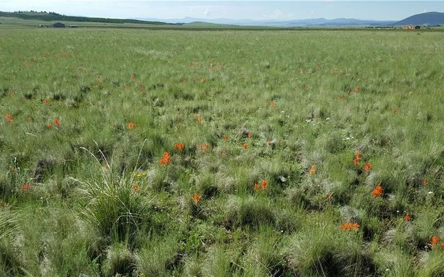 Lot 20 Co Road 18 - photo 3