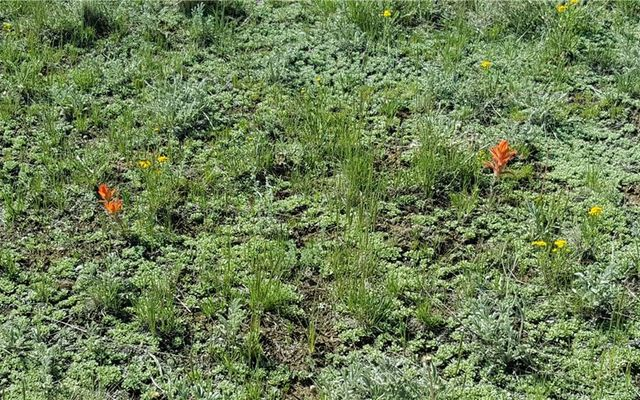 Lot 20 Co Road 18 - photo 30