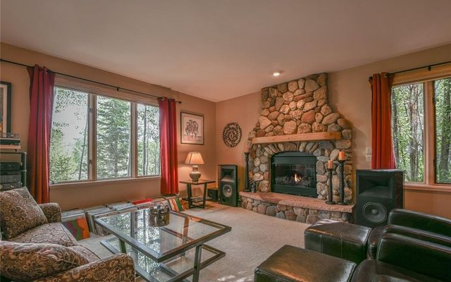729 Wild Rose Road - photo 8