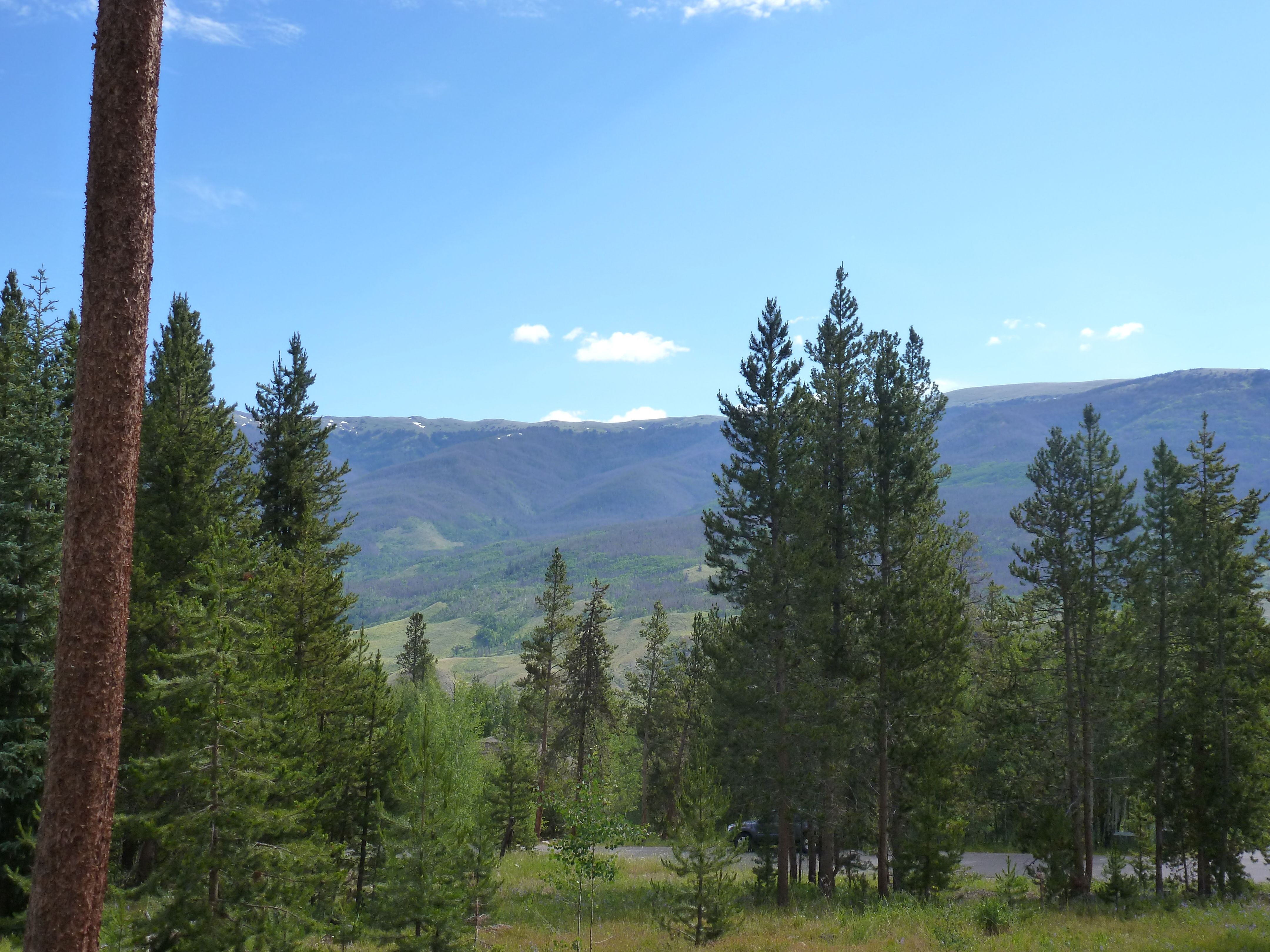 200 EASY BEND TRAIL SILVERTHORNE, Colorado 80498