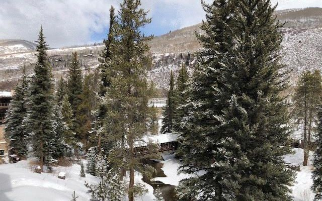 Manor Vail c339 - photo 15