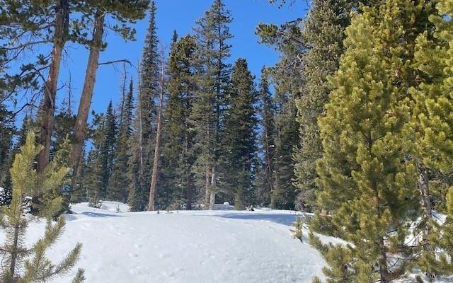 387 El Lobo Lane FAIRPLAY, CO 80456