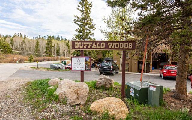 Buffalo Woods Condo 27 - photo 32