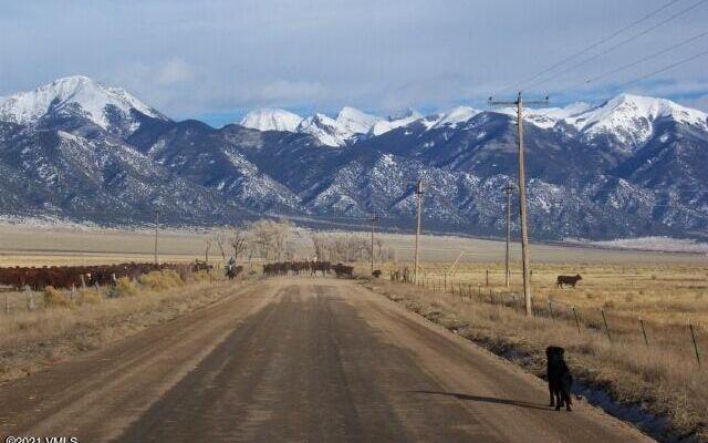 TBD Riley Way Crestone, CO 81149
