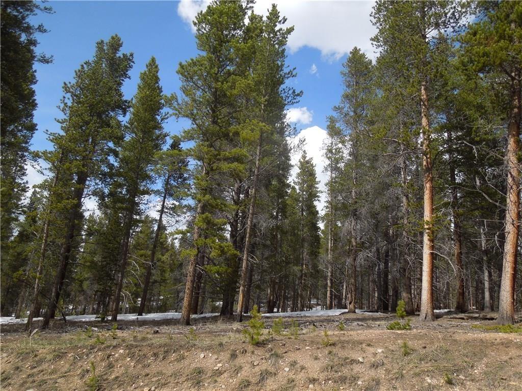 15 Elk Trail LEADVILLE, Colorado 80461