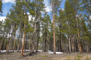 15 Elk Trail LEADVILLE, Colorado - Image 3