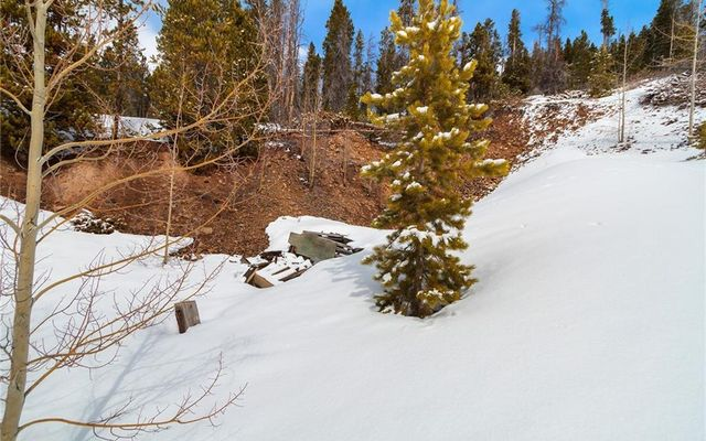 2211 Boreas Pass Road - photo 4