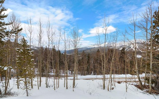 2211 Boreas Pass Road - photo 6