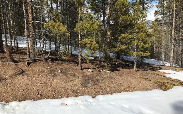 179 Spruce - photo 1