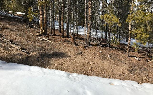 179 Spruce - photo 2