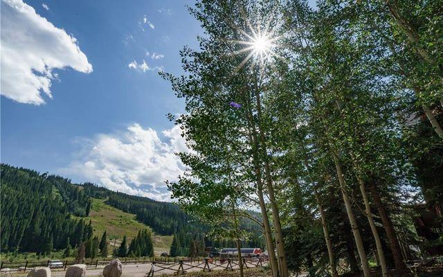 Springs At River Run Condo 8844 - photo 32