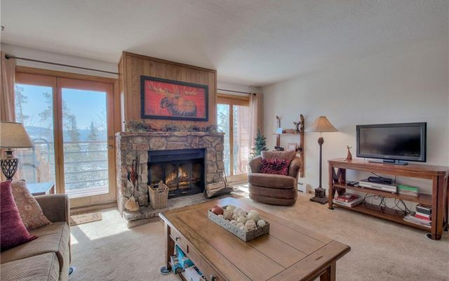 89200 Ryan Gulch Road #201 SILVERTHORNE, CO 80498